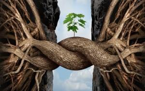 Concepto de la fuerza de la unidad y símbolo de puente identificado como dos raíces de árboles sobre un abismo que se conectan uniéndose y formando un puente para crear una nueva forma como icono del éxito de la cooperación y su fuerza.